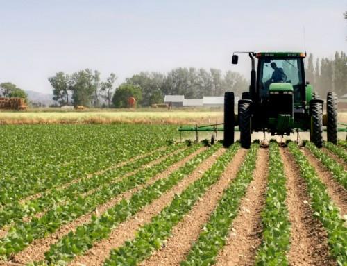 Sinais de deterioração no setor agrícola em Portugal e França